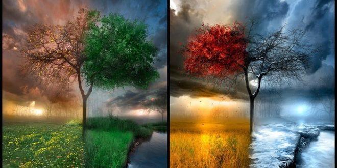 сезонность в хайпах
